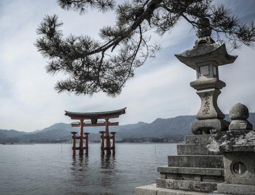 Spunti dal Giappone